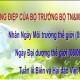 Thông điệp của Bộ trưởng Trần Hồng Hà nhân Ngày Môi trường Thế giới, Ngày Đại dương thế giới, Tuần lễ Biển và Hải đảo Việt Nam